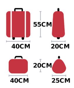 Ryanair размеры ручной клади с приоритетной посадкой